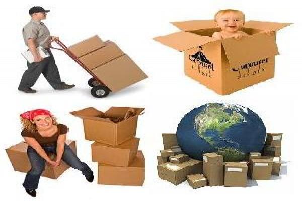 Dịch vụ giao nhận trong thương mại điện tử