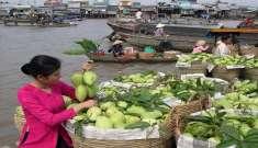 Dịch vụ chuyển phát nhanh từ Hà Nội vào Cần Thơ