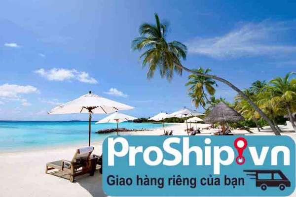 Công ty vận tải hàng hóa uy tín ở tại Nha Trang