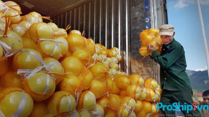 Quy trình vận chuyển hàng nông sản toàn quốc của Proship