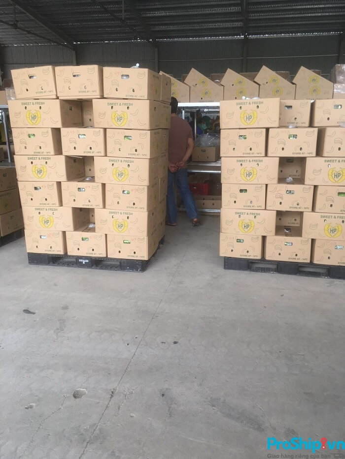 Tiêu chuẩn đạt chuẩn xuất khẩu của chuối Việt Nam hiện nay