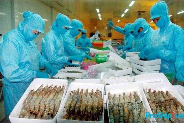 Những quy định, tiêu chuẩn xuất khẩu tôm sang Trung Quốc hiện nay