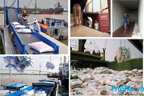 Những quy định, tiêu chuẩn xuất khẩu gạo sang Trung Quốc hiện nay