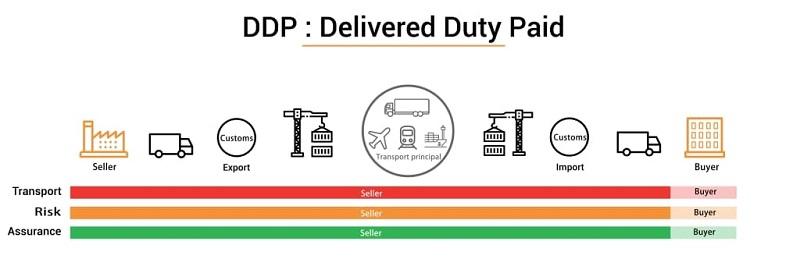 Điều kiện DDP là gì? Tìm hiểu thông tin chi tiết về điều kiện DDP