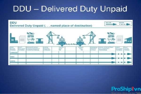 Điều kiện DDU là gì? Trong điều kiện DDU quy định những vấn đề gì?