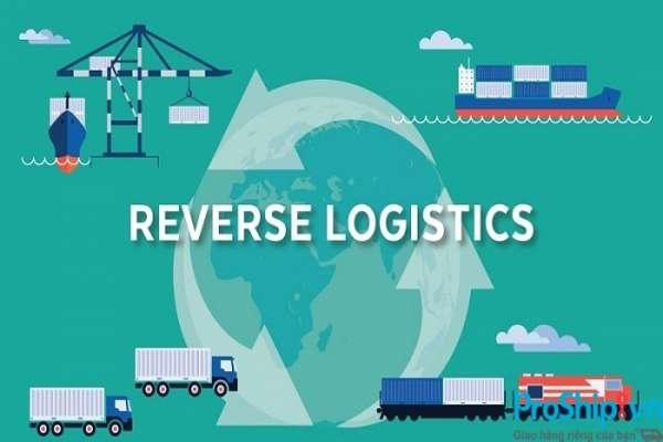 Reverse Logistics là gì? Tổng quan về dịch vụ Reverse Logistics ở nước ta hiện nay