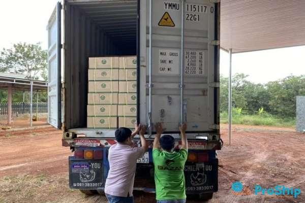Dịch vụ vận chuyển Hạt Điều bằng Container với giá cả cạnh tranh