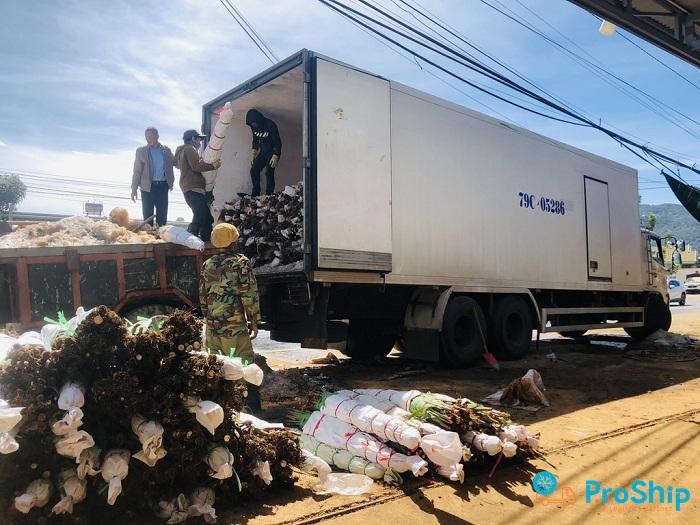 Dịch vụ vận chuyển hoa tươi bằng xe lạnh trên toàn quốc
