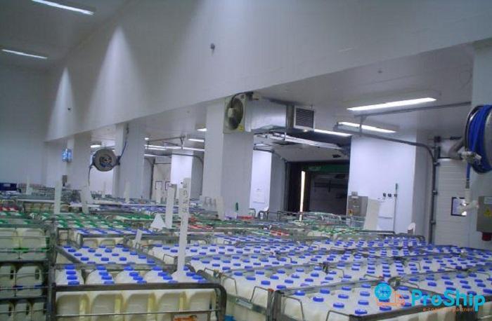 Vận chuyển Sữa và các sản phẩm từ sữa bằng Container lạnh giá rẻ