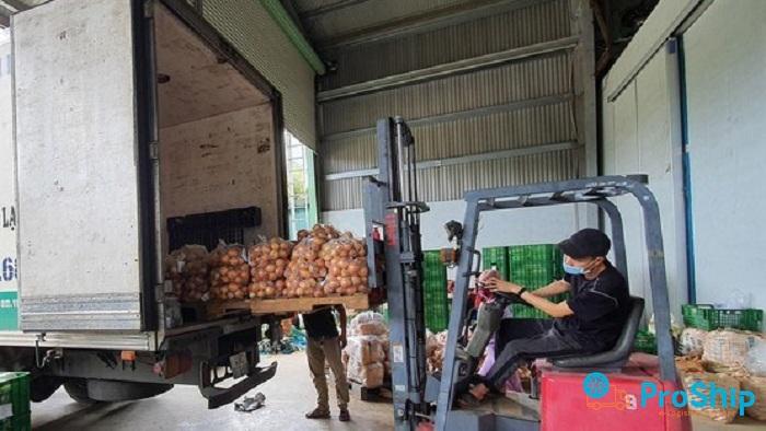 Dịch vụ vận chuyển rau củ số lượng lớn bằng Container lạnh vào Sài Gòn
